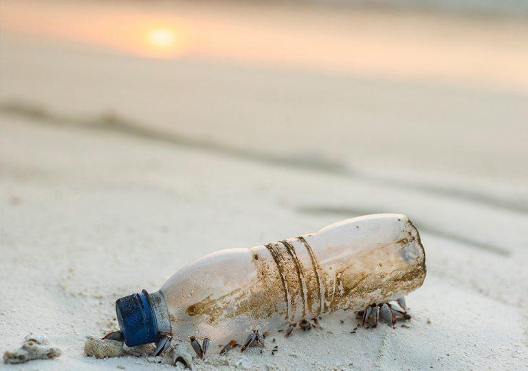 Garrafa pet na areia